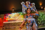 Splash de Mas Band 2014 Carnival Band Launch: Elements