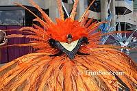 Sunshine Snacks Junior Carnival 2008 in pictures